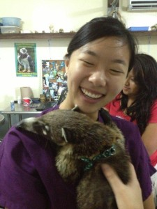 Intern Helen Sung from UCLA with Coati patient at BWRC