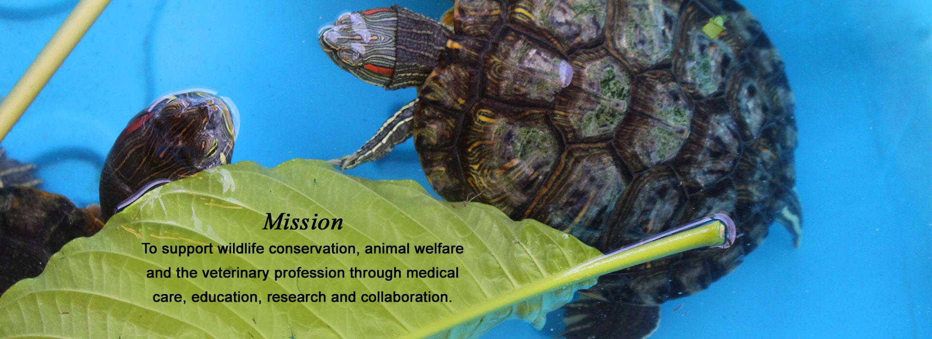 BWRC Mission